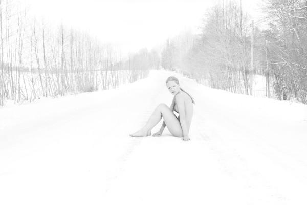 Wolf winter